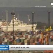 Заблокированы поставки рыбы и морепродуктов через Санкт-Петербург